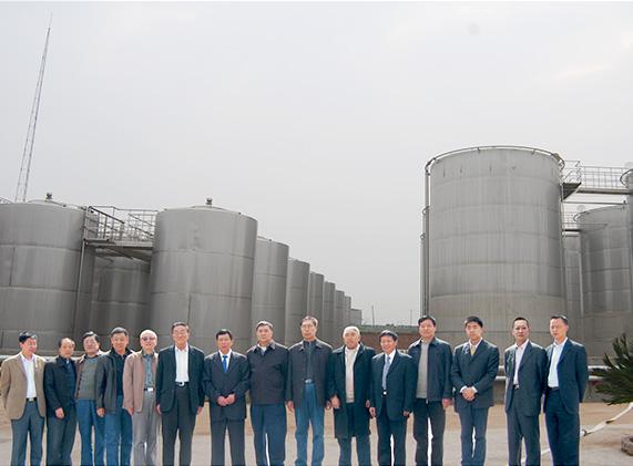全国白酒专家成员莅临工厂指导工作